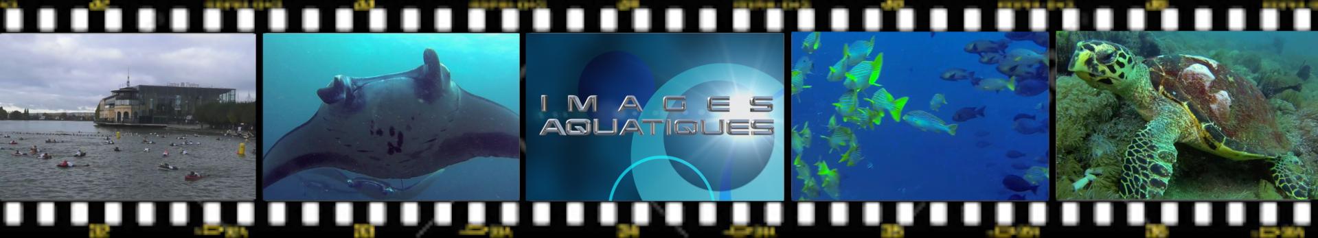 Images aquatiques